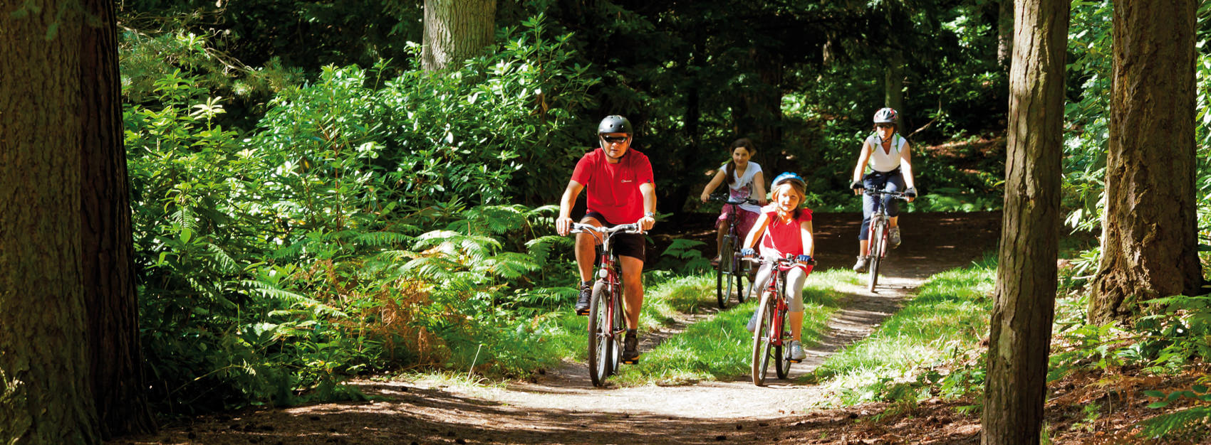 family mountain bike trails