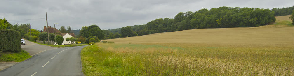 north downs field near puttenham