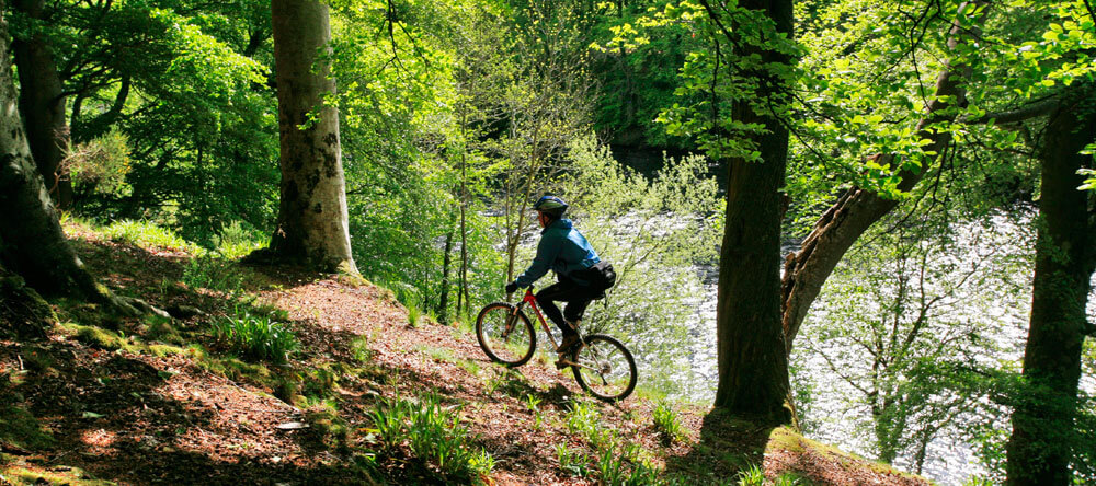 Cycling near Dunkeld