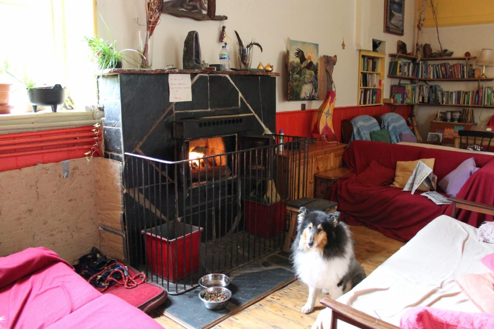 Corris Hostel dog friendly