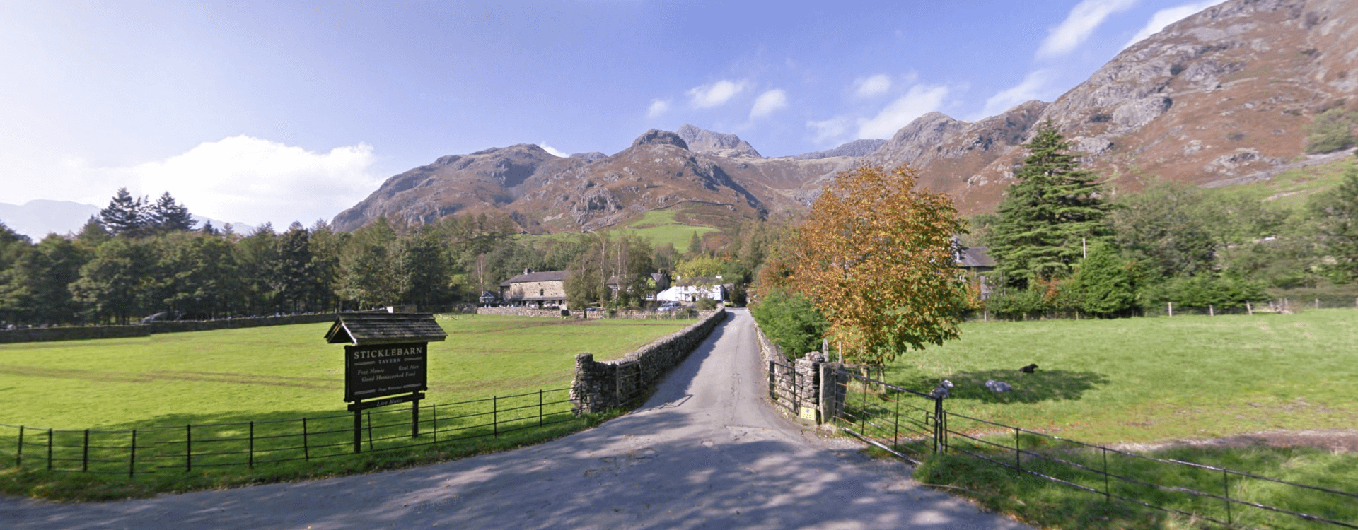Bring your dog to Great Langdale
