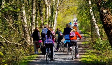 mawddach cycle trail