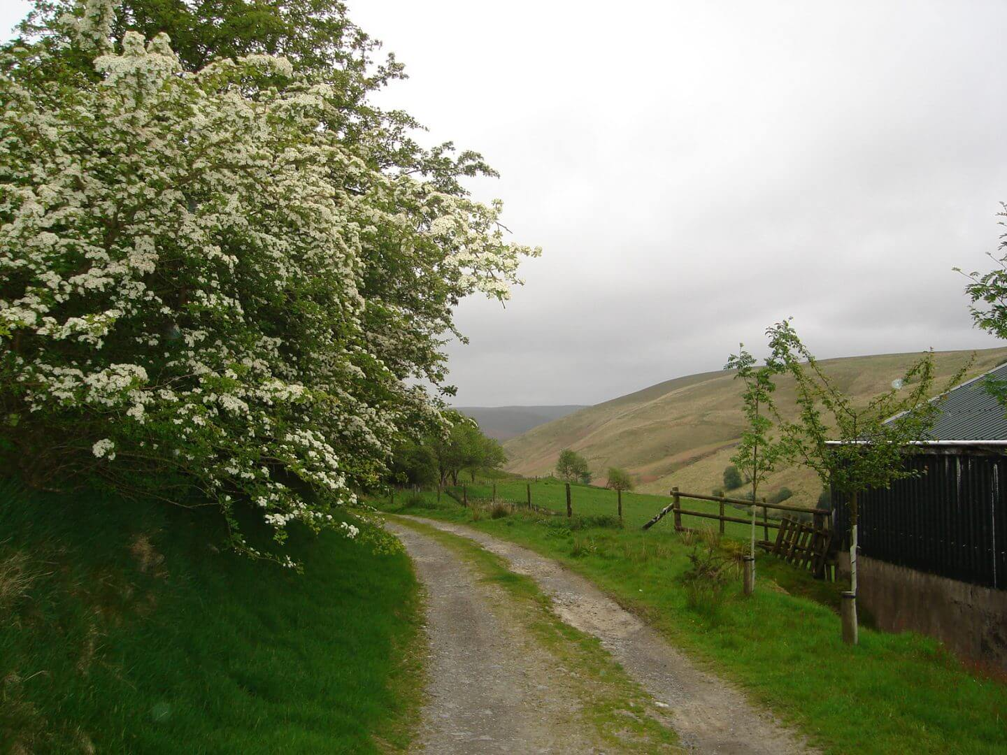 tyn cornel hostel walks
