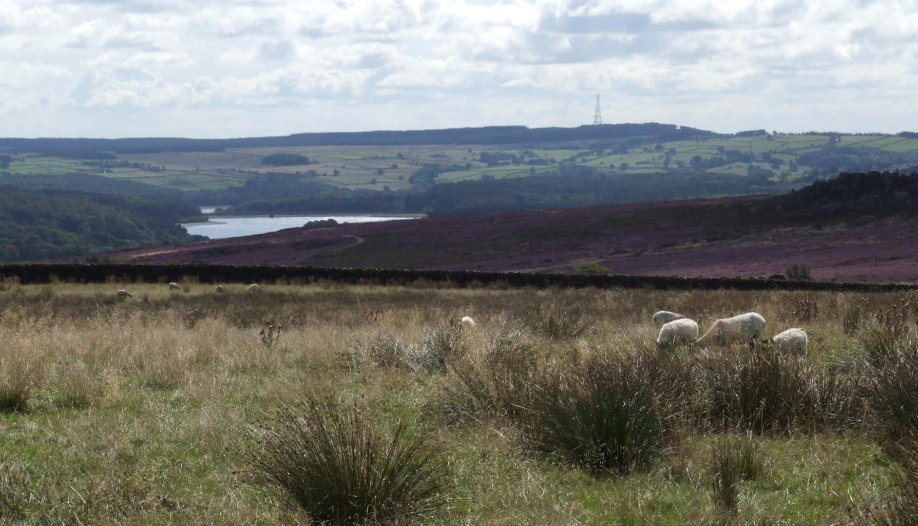 west end outdoor centre and the six dales way