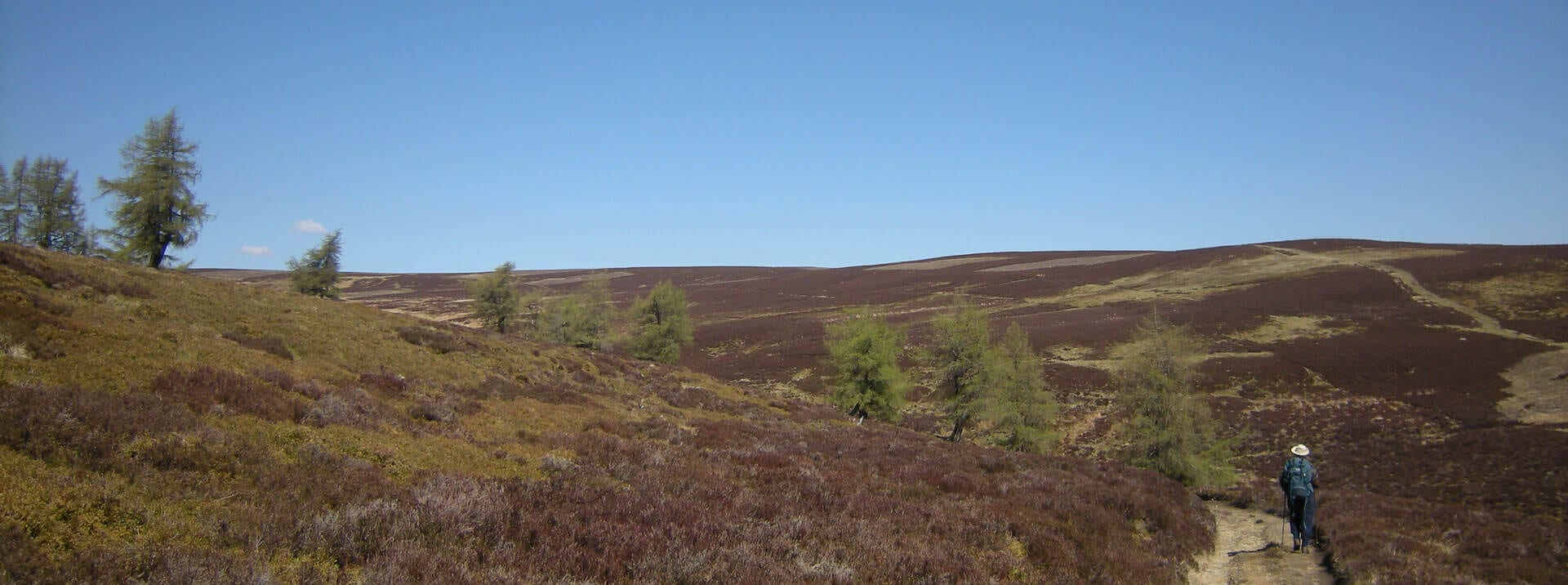 glen prosen near Prosen hostel in Angus South Cairngorms