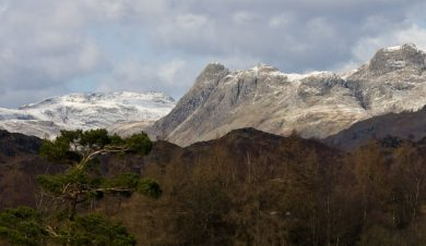 From Tarn Hows - Dave Willis