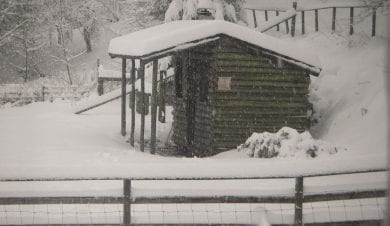Marthrown of Maybe sauna in the snow