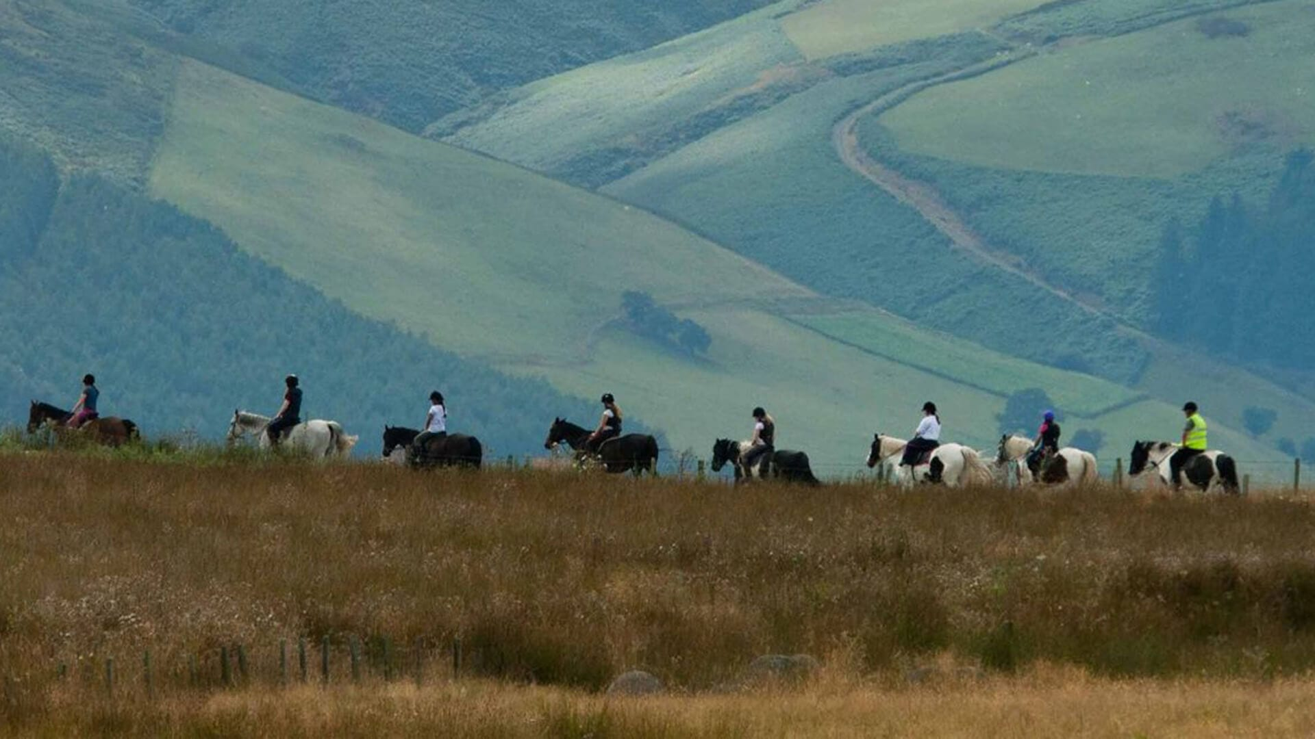 Horse riding holiday. Take your own horse on holiday with horse B & B, or join an organised trek.