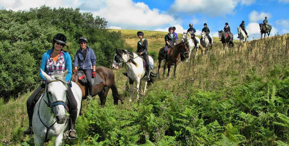 A riding holiday group at Springhill Farm Bunkhouse. Use their horses or book horse B & B for your own horse