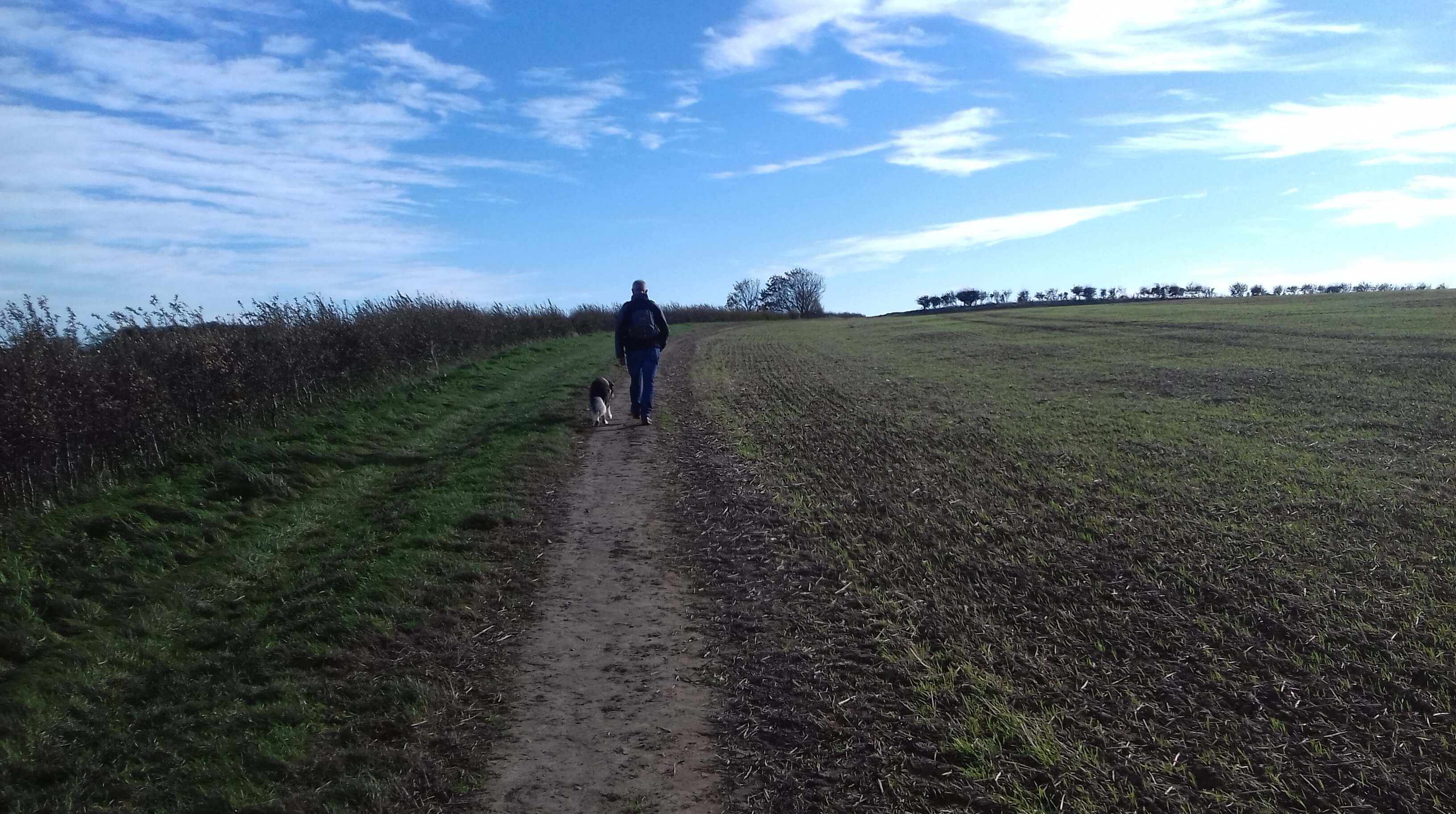 A glorious walk this week along part of St. Oswald's way from Seahouses to Bamburgh...