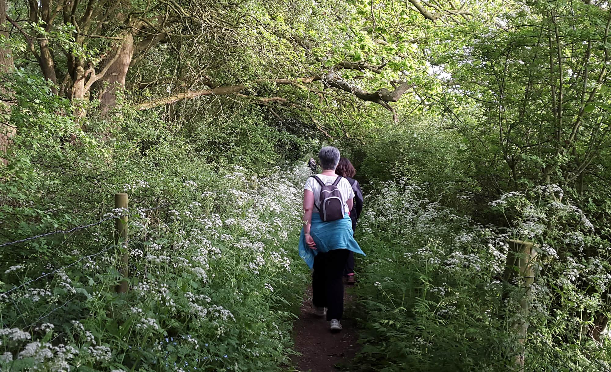 Start/Finish your Essex Way Walk in Harwich