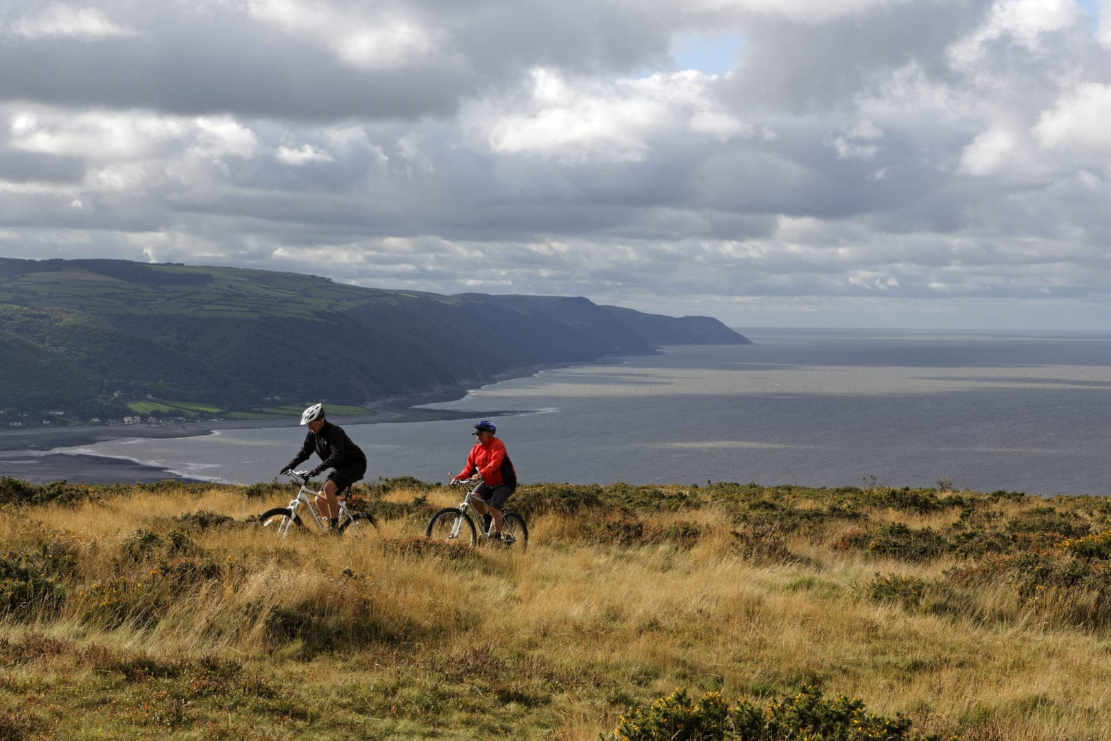 Mountain bikers Bossington Hill above Porlock Bay, on the Holnicote Estate, Exmoor National Park, Somerset.