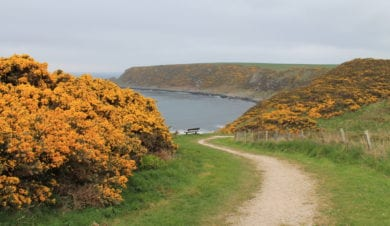 Moray Coast Walking Festival