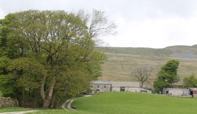Broadrake Bunkbarn, luxury remote bunkbarn with superfast broadband