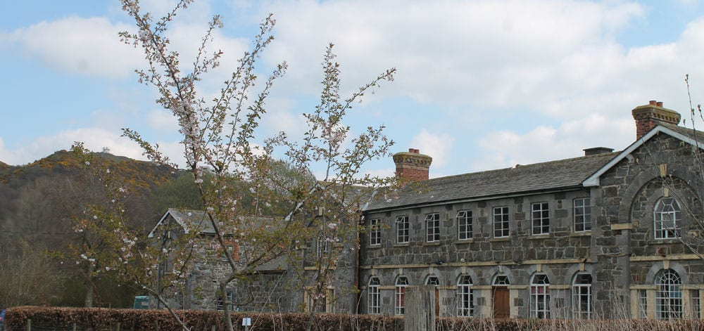 Bunkhouse at the Workhouse, Y Dolydd Llanfyllin, with the site of the lonely tree behind