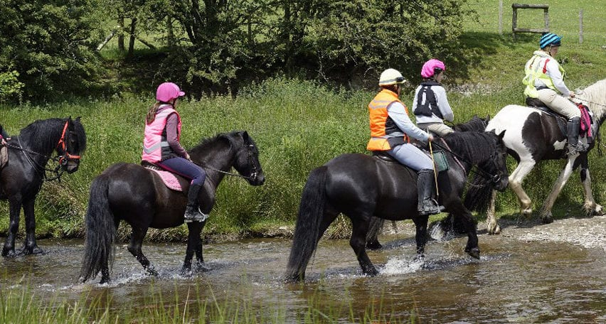 Mid Wales Bunkhouse - horse riding