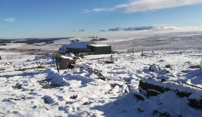 Spend Xmas and New Year at Ilderton Dod Barns