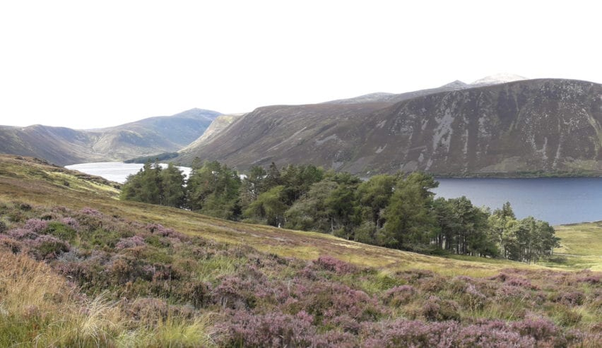 Cairngorms by ballater