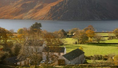 Autumn colours at wild wool barn in ennerdale