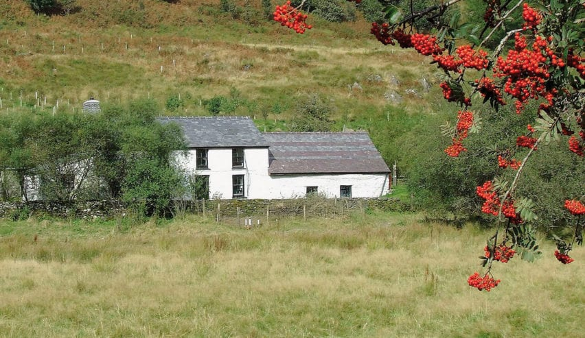 dolgoch hostel with autumn berries