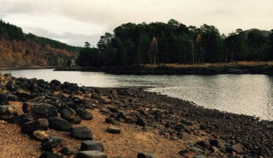 The shores of Loch Ness are great for dog walking