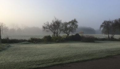 Misty fields perfect for dog walking