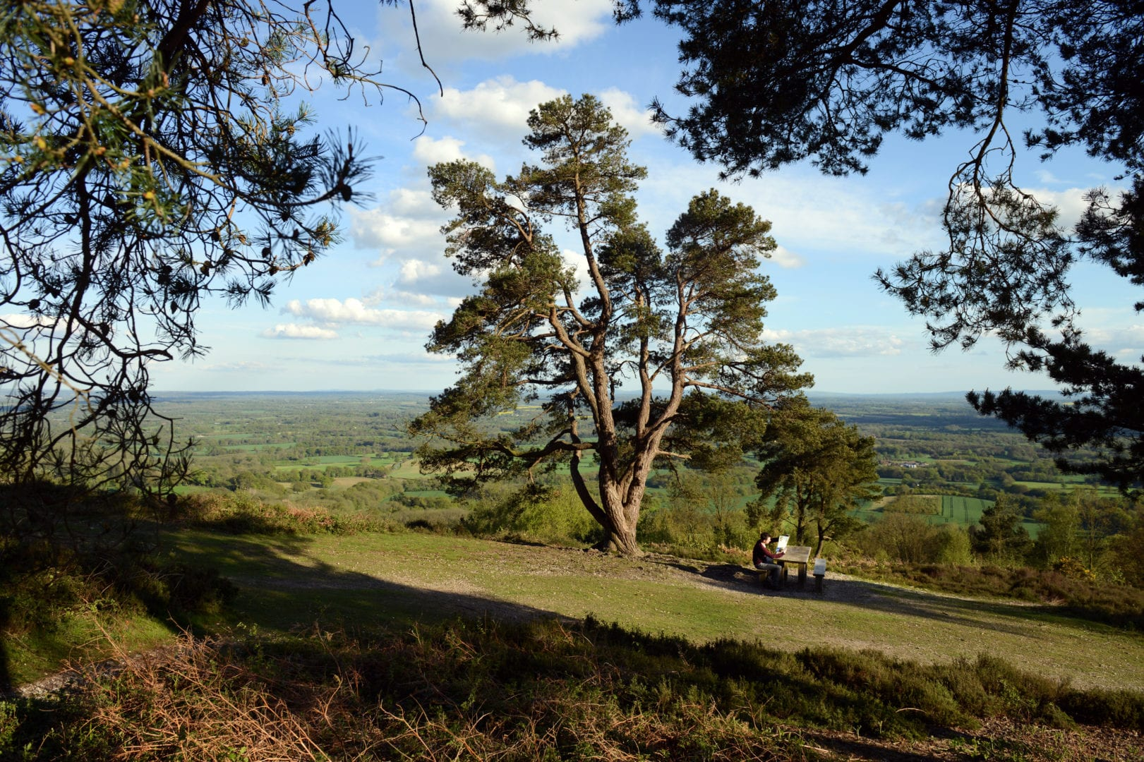 Visitor sitting at a picnic table at Leith Hill, Surrey