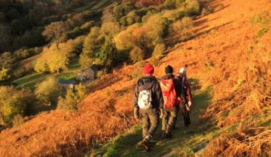 walkers surounded by autumn colours in the brecon beacons