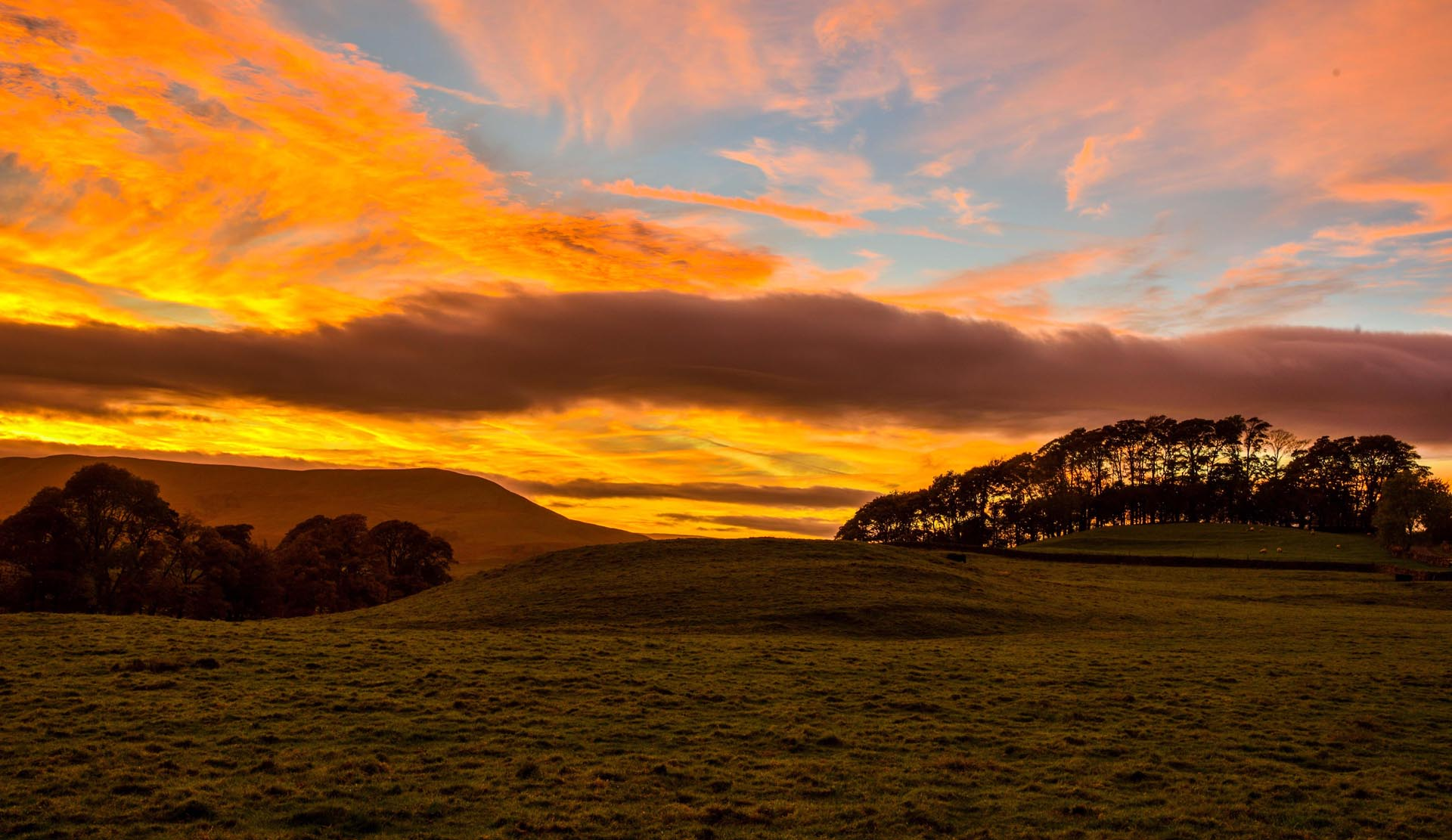 Autumn Breaks in Northumberland : Staycations in the North Pennines and Northumberland