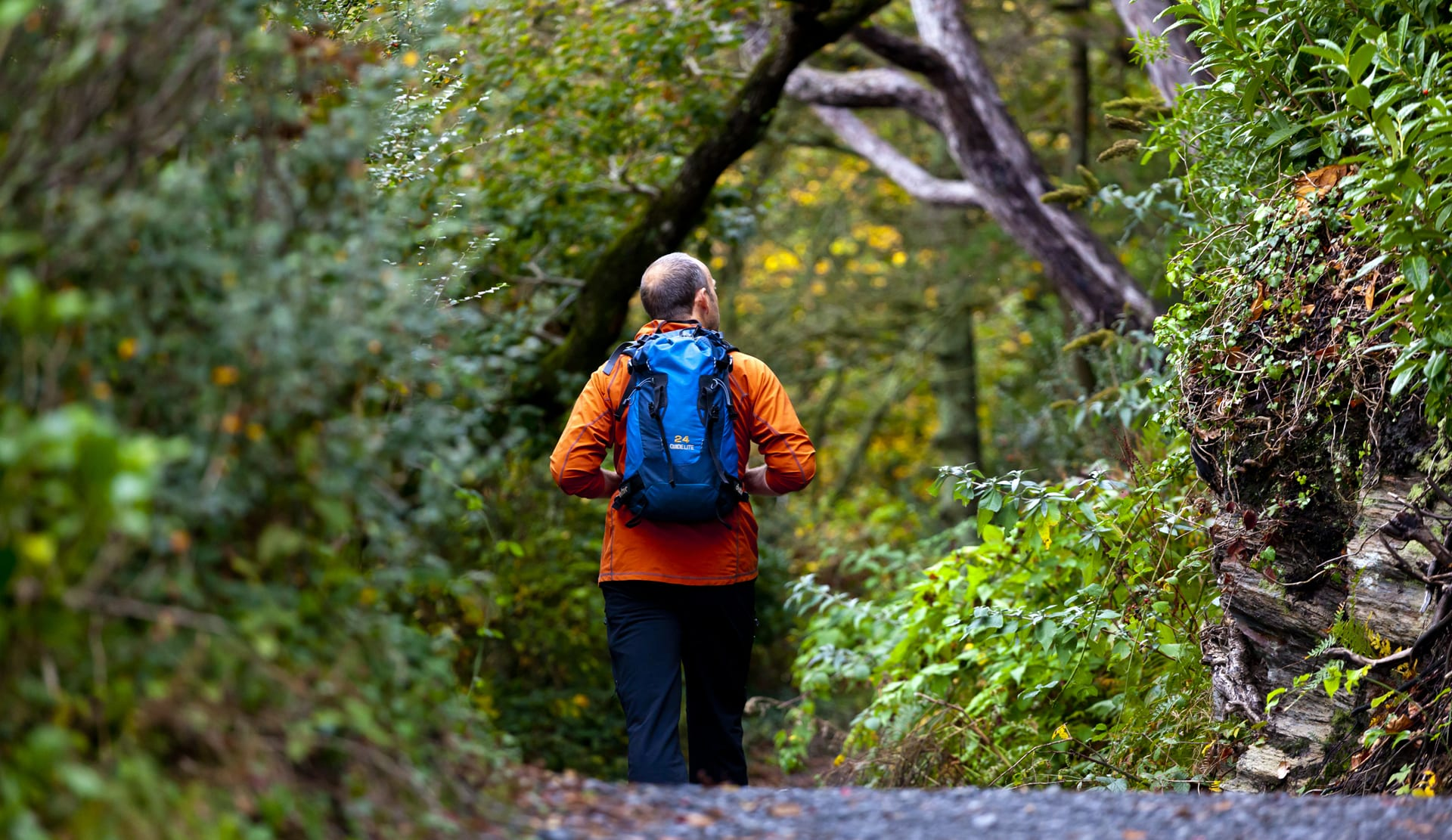 Man Walking amongst Autumn leaves in South East England