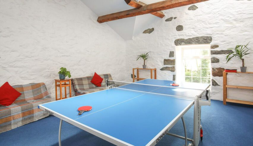 snooker at Brynkir Coach House