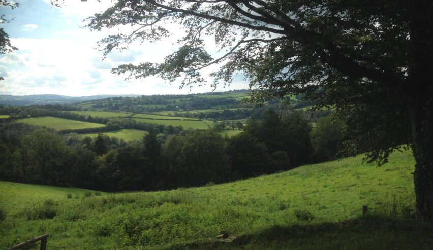 view from the long barn