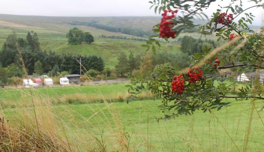 campsite at haggs bank bunkhouse in the north pennines